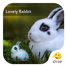 Lovely Rabit In Green Theme