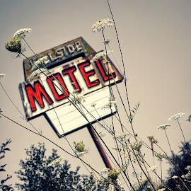 Hillside Motel  by Todd Reynolds - Digital Art Places
