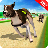 Download Wild Greyhound Dog Racing Fever APK