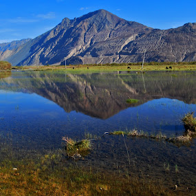 by Vijay Nagaonkar - Landscapes Mountains & Hills