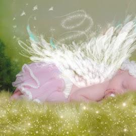Angel Baby by Chris Cavallo - Digital Art People ( baby girl, pink, enchanted, baby, babies, fairy, digital art )