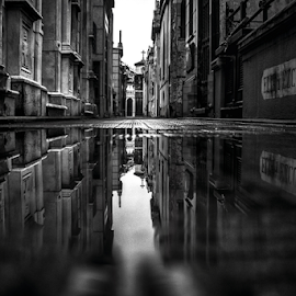 Reflection by Edi Libedinsky - Black & White Buildings & Architecture ( creepy, reflection, tomb, black and white, cemetery, dark, gloomy,  )