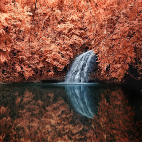 Tanah Merah Waterfall by Daniel Chang - Landscapes Travel ( fall, color, colorful, nature,  )