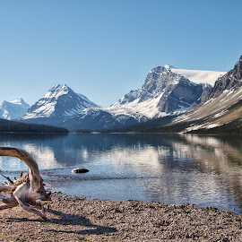 Bow Lake with reflections  by Margie Troyer - Landscapes Waterscapes
