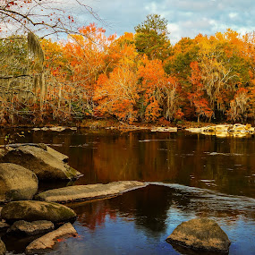 Saluda River Autumn by Jonathan Wheeler - Landscapes Waterscapes ( fall colors, autumn leaves, reflections, saluda river, scenic rivers )