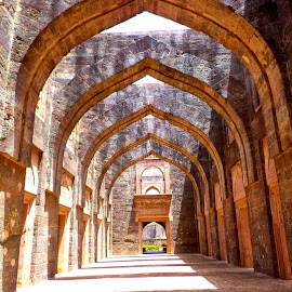 Arches of Jahaj Mahal... by Riya Saxena - Buildings & Architecture Public & Historical ( arches, jahajmahal, fort, travel, mandu )