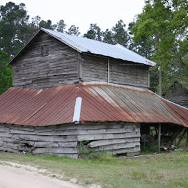 TOBACCO BARN  by Douglas Edgeworth - Buildings & Architecture Decaying & Abandoned