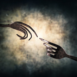 The creation by Ivan Ivanov - Artistic Objects Cups, Plates & Utensils ( forks, fork, object, utensils, objects, black )