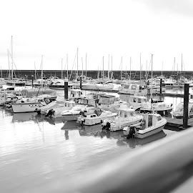 Port Marina.Uk by Mihai Sirb - Public Holidays Thanksgiving ( uk )