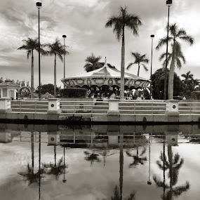 The Carousel  by Rashid Mohamad - City,  Street & Park  Amusement Parks ( merry go round, black and white, carousel, brunei, jerudong park )