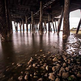 by Larry Rogers - Buildings & Architecture Bridges & Suspended Structures