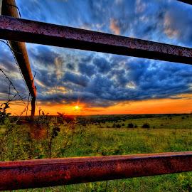 Looking thru a Cattle Gate by Derrill Grabenstein - Landscapes Prairies, Meadows & Fields