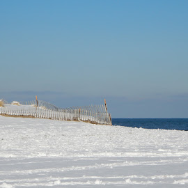 Fenced off Snowy Dunes at Beach by Kristine Nicholas - Novices Only Landscapes ( dunes, icy, waterscape, dune, fences, ocean, beach, landscape, fencing, cold, ice, snow, cloudy, clouds, sand, sand dune, sea, snowy, seascape, fence, winter, blue, sand dunes, reservation, waterway )