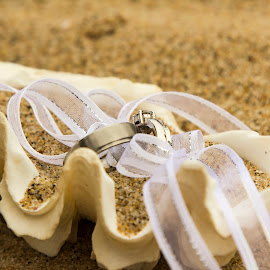 Wedding rings in sea shell by Nico Jacobs - Wedding Other ( sand, shell, sea shell, marraige, bride, groom, lint, engagement )