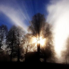PWCfoulweather by Lidija P - Landscapes Weather
