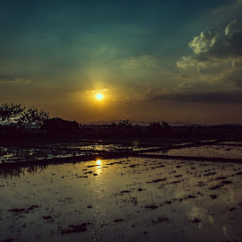 Amorsolo SUnset by Ynon Francisco - Landscapes Sunsets & Sunrises ( countryside, farm, field, rural, country )