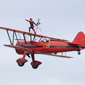 Wing Walker II by Per Holt Oksen-Larsen - Transportation Other ( wing, plane, a, on, walker,  )
