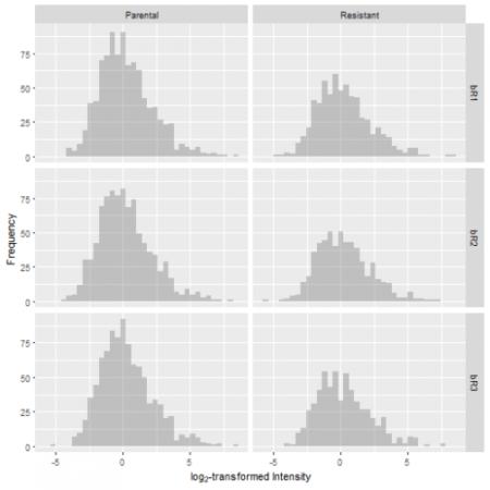 Proteomics Data Analysis (2/3): Data Filtering and Missing Value Imputation