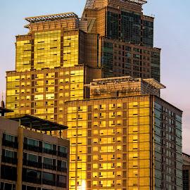 Future Sun by Chris Brown - Buildings & Architecture Office Buildings & Hotels ( reflection, building, whoshotchris, sun, sky, blue, sunset, future, buildings, seoul, glass, korea, golden, golden hour )