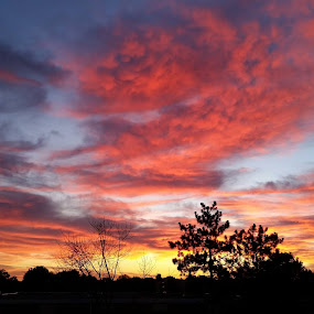 fire skies by Janis Hibbs - Uncategorized All Uncategorized