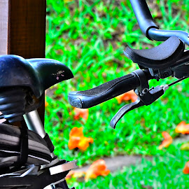 by Rogerio Ribas - Transportation Bicycles
