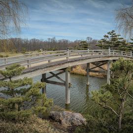 Japanese Style Bridge by Robert Coffey - Buildings & Architecture Bridges & Suspended Structures ( water, lake, chicago, japanese, bridge, garden )