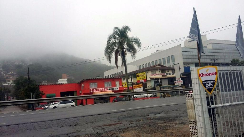 Metta Imobiliária - Terreno, Saco Grande (TE0276) - Foto 6