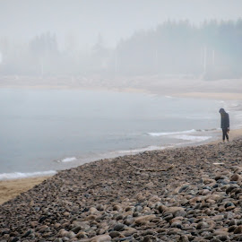 Foggy Beach by Richard Michael Lingo - Landscapes Weather ( nova scotia, fog, weather, landscapes, spring )