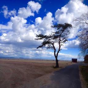 BEACH by Zoritza  Wejnfalk - Nature Up Close Sand ( sand, åhus, zoritza, beach, zozo, wejnfalk )