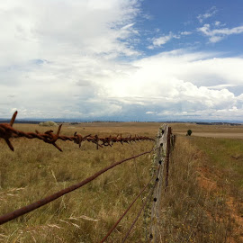 Monaro Highway NSW by Steve Commons - Landscapes Prairies, Meadows & Fields