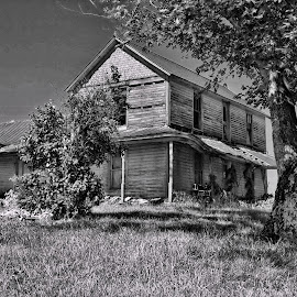 Alone with the Tree by Gwen Paton - Buildings & Architecture Decaying & Abandoned ( decaying house, black and whit, virginia, porch, abandoned house )