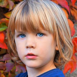 by Dalibor Jud - Babies & Children Child Portraits ( red, nature, blue, kids, eyes )