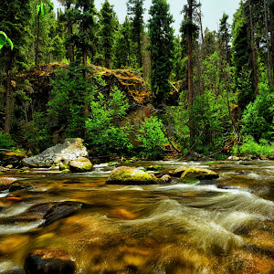 South Fork of Rio Grande, Wolf Creek CO 59.jpg