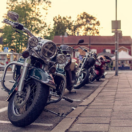 Harley & CO by Bojan Bilas - Transportation Motorcycles