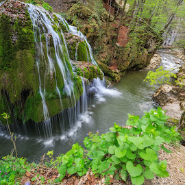 Bigar Waterfall  by Sveduneac Dorin Lucian - Landscapes Mountains & Hills ( waterfall, romania, places, landscape, spring )