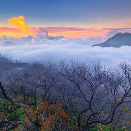 Ijen Crater by Dek Seplo - Landscapes Mountains & Hills