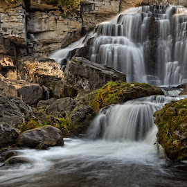 Inglis Falls 2 by Carl Chalupa - Landscapes Waterscapes ( waterfalls, waterfall )