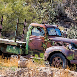 Dodge Truck by Dave Lipchen - Transportation Automobiles ( dodge truck )