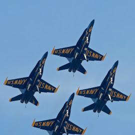Blue Angels Landing by Bill Telkamp - Transportation Airplanes ( airplanes, airplane, jet, blue angels, airshow )