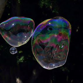 We can't all come and go via bubble! by Amanda Daly - Uncategorized All Uncategorized (  )