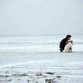 by Dr .Ghanshyam Patel - Landscapes Deserts (  )