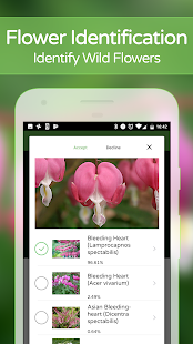 PlantSnap - Identify Plants, Flowers, Trees & More