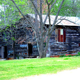SPRING TIME IN DIXIE by Douglas Edgeworth - Buildings & Architecture Decaying & Abandoned