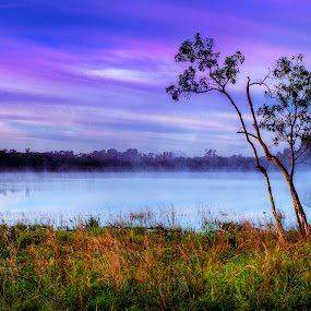 Morning Fog by Jay Kleinrichert - Landscapes Prairies, Meadows & Fields