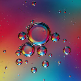Reflections by Janet Herman - Abstract Macro ( abstract, oil drops, oil and water, macro, colorful, floating, reflections )