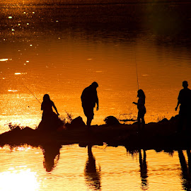 Group Fishing by Cecilia Sterling - People Street & Candids ( orange, reflection, sunset, lake, fishing )