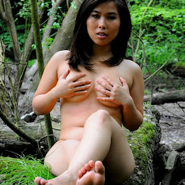Circe's Seat by DJ Cockburn - Nudes & Boudoir Artistic Nude ( forest, woman, woodland, log, natural light, asian, concealed nude, implied nude, cece, portrait, outdoor, chinese, model, sitting )