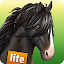 Free Download HorseWorld 3D LITE APK for Samsung