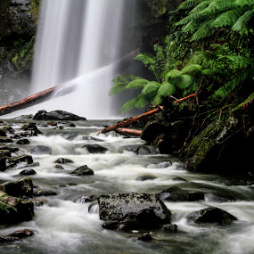 Hopetoun Falls by Bevlea Ross - Landscapes Waterscapes ( water, forests, waterfalls, green, streams, ferns, Water,  )