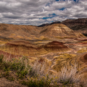 Painted Hills by Craig Pifer - Landscapes Mountains & Hills ( oregon, hills, john day fossil beds, stitch, landscape, painted hills )